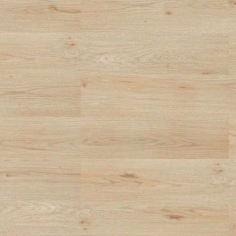 Argent Oak