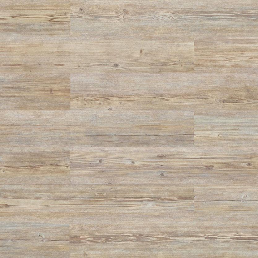 Nebraska Prime Oak